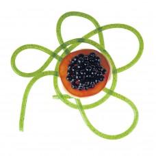 Spaguetti Molecular